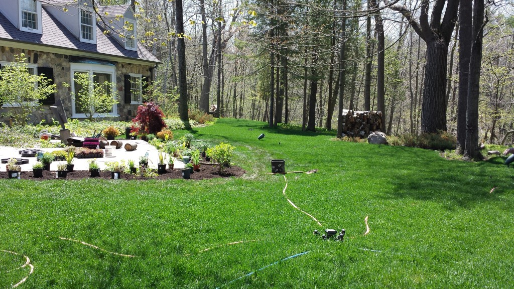 Natural Lawn Care Milwaukee